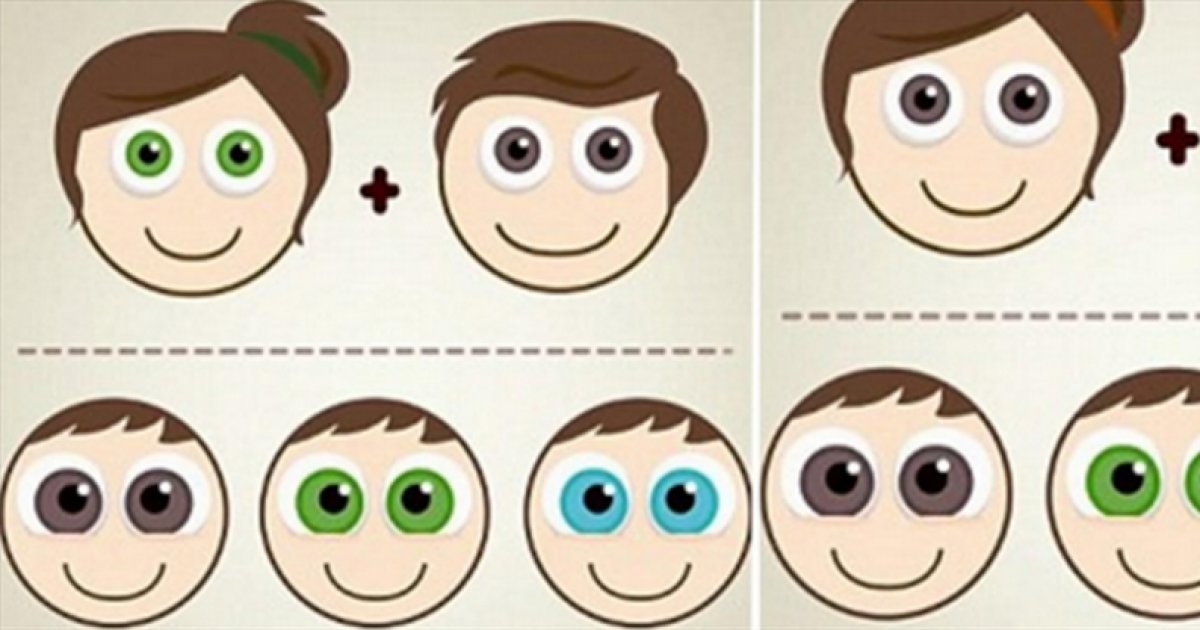Have You Ever Wondered What Will Be The Colour Of Your Children S Eyes